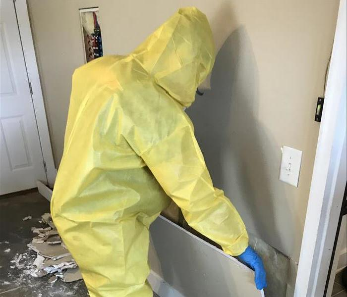 Mold Remediation Indoor Air Quality in Birmingham South